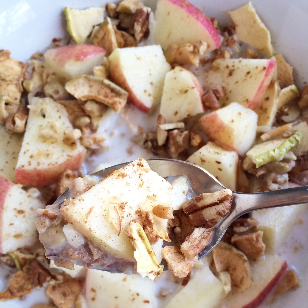 Apple Cinnamon Paleo Rawnola Recipe